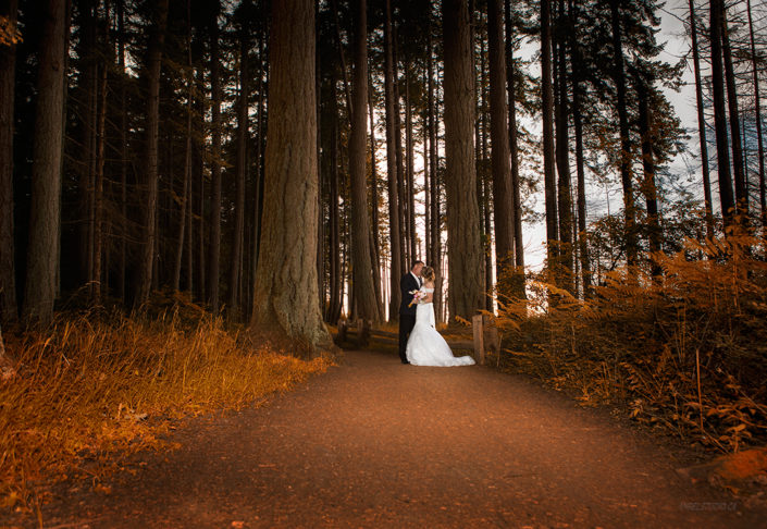 wedding picture, romantic wedding, forest wedding